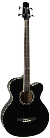Guitars - Acoustic bass